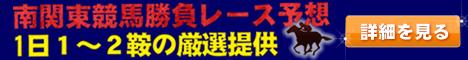 南関東競馬 ワイド馬券1点勝負予想会員